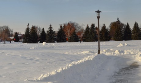 Panoramic in the Park
